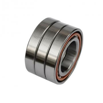 85 mm x 180 mm x 60 mm  FAG NU2317-E-TVP2 Cylindrical Roller Bearings